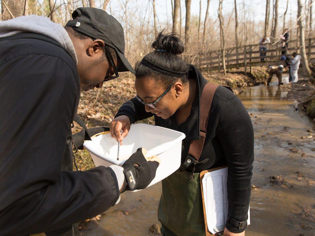 Biology-Creek-Sampling