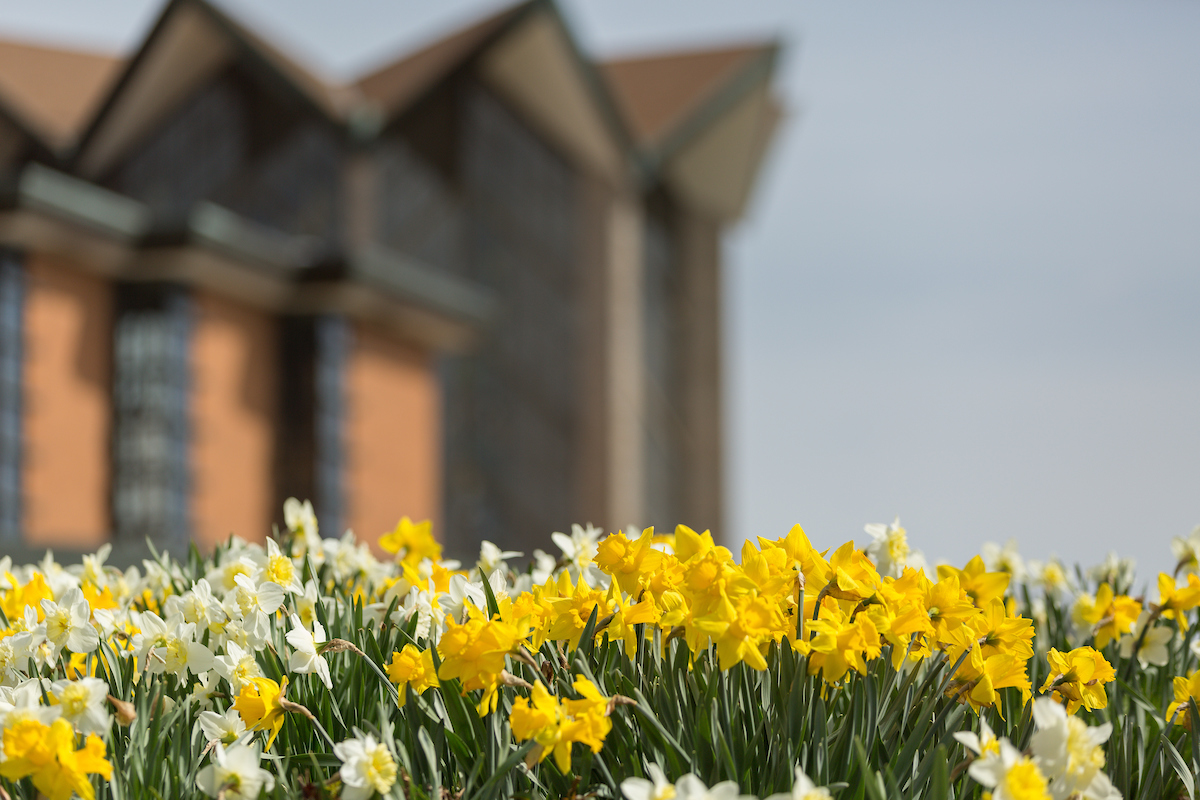 Chapel of the Resurrection with daffodils in the foreground