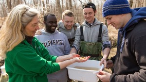 Photo of professor examining soil sample with students