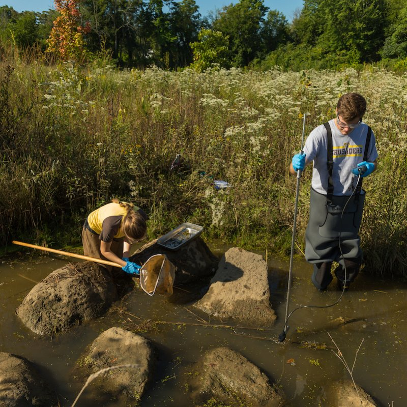 Environmental engineering students analyze a local water source.