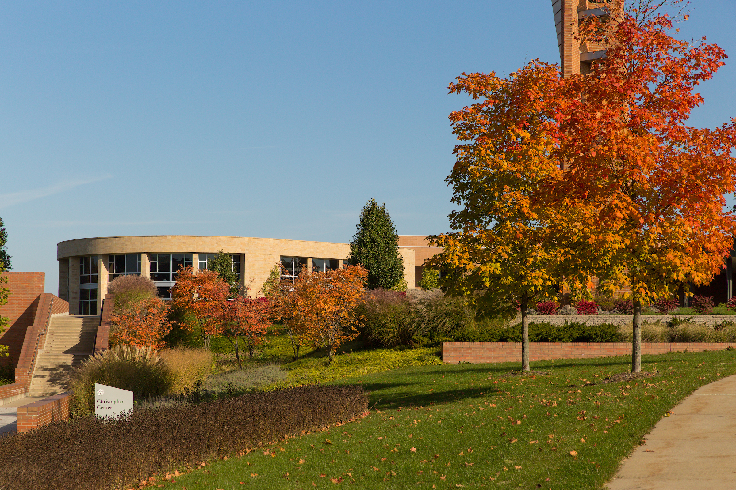 View of union with fall leaves on tree