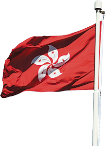 photo-ourValpo-flag