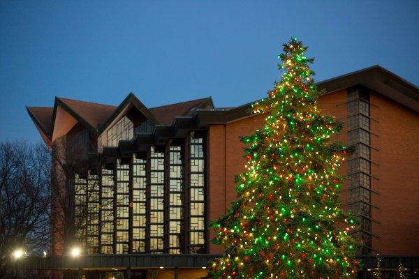 Christmas tree Campus Scenes